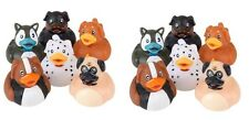 12 Count Dog Figures Style Rubber Ducks 2 Inches Tall Toy Prank Gag