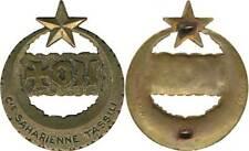 Compagnie Saharienne du TASSILI, bronze, D.Paris Dép. (6410)