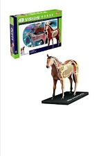 HORSE ANATOMY MODEL/PUZZLE, 4D Vision Kit #26101  TEDCO SCIENCE TOYS