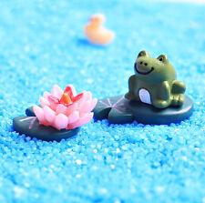3pcs Micro landscape Mini Frog & Lotus Bonsai Plants Garden Fairy Decor Lovely