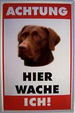 Atención perro labrador chapa escudo Escudo de chapa de metal metal Tin sign 20 x 30 cm