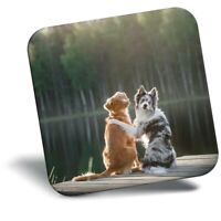 Awesome Fridge Magnet - Border Collie Dog Friends  #44423