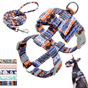 Nylon Dog Harness and Leash Set Pet Puppy Bowknot Harness Vest Chihuahua Walking