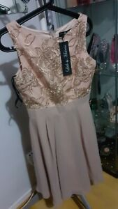 Little mistress Dress Uk 10 New With Tag