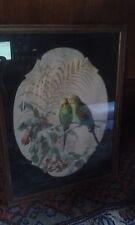 ancien tableau a la gouache sous verre  les oiseaux couple de perruche  XIX eme