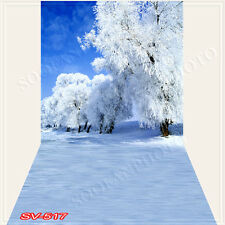 Christmas10'x20'Computer/Digital Vinyl Scenic Photo Backdrop Background SV517B88