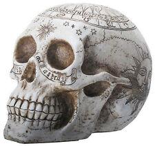 Astrology Skull Statue Sculpture Figurine - HOME DECOR