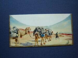 TEN (10) INCREDIBLE Iranian Miniatures on Bone, Ali Sajjadi Listed