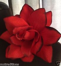RED w/ BLK FLOWER HAIR CLIP FOR MEXICAN FIESTA,5 DE MAYO,DAY OF THE DEAD,WEDDING