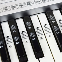 Piano and Keyboard  Full Set Stickers for White and Black Keys