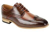 Men's Dress Shoes Wing Tip Oxford Ch. Brown/Tan 2-Tone ANTONIO CERRELLI 6809