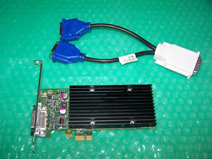 Nvidia NVS 300 512MB PCIe x1 Dual Monitor Graphics Card + splitter Cable
