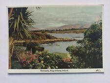 Parknasilla, Ring of Kerry Ireland c1952 colour Postcard