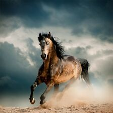 3D Pretty Running Horse 2232 Paper Wall Print Wall Decal Wall Deco Indoor Murals