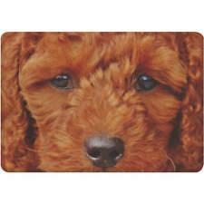 'Poodle Face' Fridge Magnet (FM00007066)