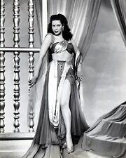 """YVONNE DE CARLO IN THE 1950 FILM """"THE DESERT HAWK"""" - 8X10 PHOTO (AA-656)"""