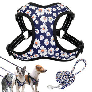 Soft Mesh Dog Harness and Leash Safety Reflective Walk Vest for Small Medium Dog
