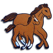 Pony Horse Fantasy Pegasus Patch Embroidered applique Iron on A Bronco Cartoon
