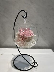 Preserseved Flowers Pink Rose And Hydrangeas In Hanging Glass Last Up To 5 Yrs