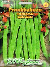Prunkbohnen Feuerbohnen rotblühend Stangen Bohnen  Saatgut  473021 Gemüse