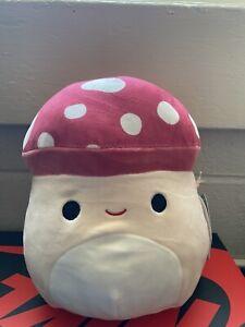 malcolm squishmallow 8 inch NWT RARE