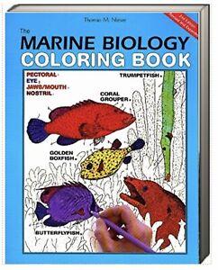 Marine Biology Coloring Book by Thomas M. Niesen (Paperback)New remainder mark*