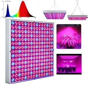 LED Lampe Horticole Panneau Lampe de Croissance Culture pour Plante Intérieur