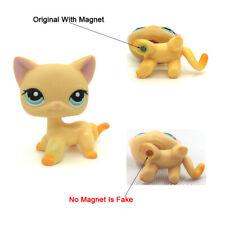 Littlest Pet Shop LPS Toy #339 Orange Cat Blue Eyes Short Hair Race About Ranch