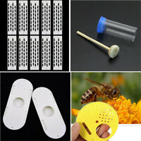1/3pcs Bee Queen Marking Cage Bottle Bee Escapes Beekeeping Beekeeper Tool
