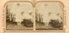 STEREOSCOPIE Stereoview E.H. PARIS ADIEU FLEURS