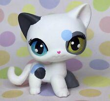 Littlest Pet Shop, Short Hair, Cat, Ooak Custom, Hand Painted, LPS