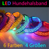 Hundehalsband LED Leuchthalsband für Hunde🐶 6 Farben 4 Größen S-M-L-XL ✅Neu✅