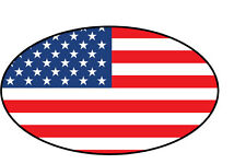 USA FLAG IN OVAL SHAPE STICKER - Vinyl Sticker - 16 cm x 9 cm