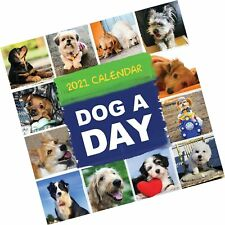 2021 Dog-A-Day Monthly Wall Calendar - Photographs - Dogs - New