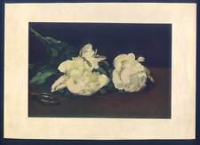 Édouard Manet-Päonien-Pfingstrosen-Stillleben - Lithographie um 1870