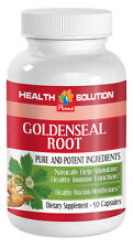 Anti-Inflammatory Pills - Goldenseal Root 520mg - Yellow Root 1B