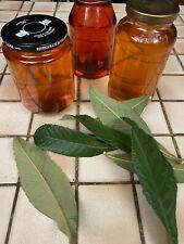Organic loquat tea leaves, plus zinfandel grape leaves and mint leaves