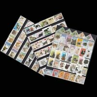 Cats From The World Unused With Post Mark Animal Postage Stamps 100 PCS/lot New