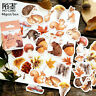 Decor Stationary Diary Label Paper Sticker Fall Squirrel Stickers Scrapbooking-