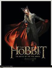Hot The Hobbit Elves King Thranduil Cosplay Costume Full Set Custom Made