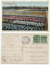 02363 - Hyazinthen - Blumenfelder - AK, gelaufen Haarlem 29.4.1930 nach Basel