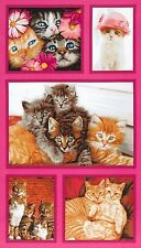 Crazy Cats & Kittens Panel Quilting Sewing Fabric Blocks Robert Kaufman #5026