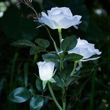 3 Head White Rose flower Solar Light LED Decorative Outdoor Lamp Home Decor Hot