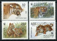 Russia 1993 MNH Tigers WWF 4v Set Big Cats Wild Animals Stamps