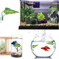 Betta Hammock,Betta Fish Leaf Pad,Plastic Aquarium Plants With Suction Decor ILJ