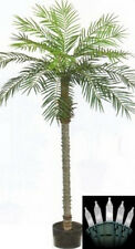 7 foot Artificial Phoenix Palm Tree Date Sago in pot & Holiday Christmas Lights