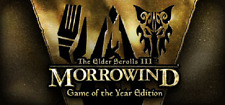The Elder Scrolls III: Morrowind Game of the Year Edition PC *STEAM CD-KEY* 🔑🕹