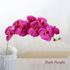 Real Touch Phalaenopsis Panda Orchid Artificial Silk Flowers Home Decoration