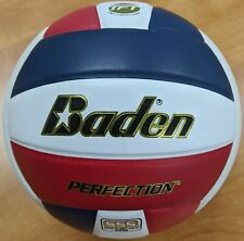 Baden Perfection® Premium Leather Volleyball