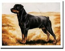New Rottweiler In Field Notecards 6 Note Cards 6 Envelopes By Ruth Maystead